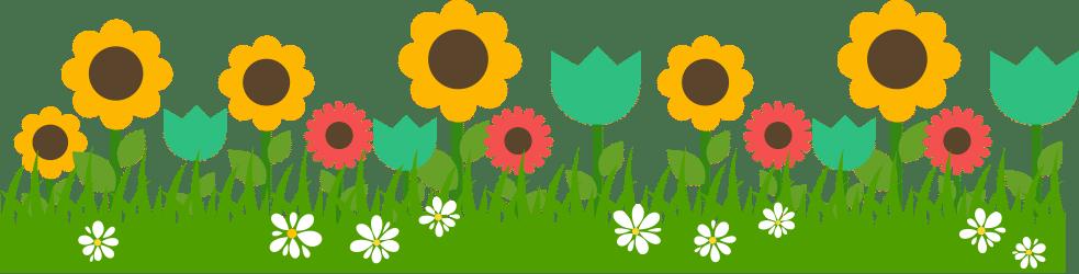 SELECTING PLANTS Beautiful Long Beach Lawn To Garden